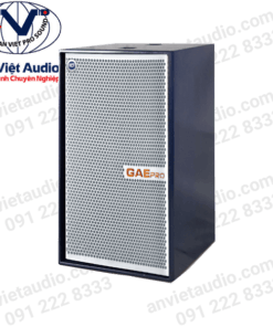 Loa GAE Pro SN-218S