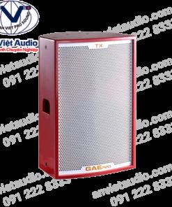 Loa GAE Pro TX-15