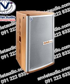 Loa GAE Pro WE-1012