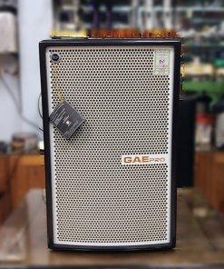Loa GAE Pro SN-12